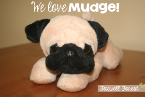 My Best Friend – Fun with Henry and Mudge!